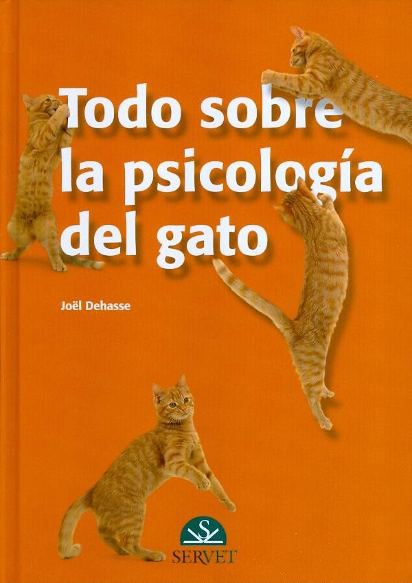 todo-sobre-la-psicologia-del-gato