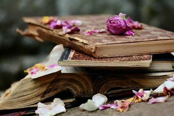 Ocho Géneros de Escritura: ¿Cuál prefieres?