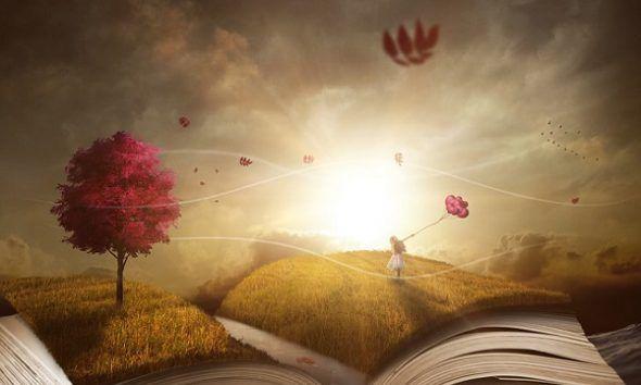 5 Razones para Regalar Libros