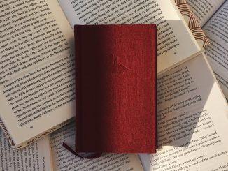 Libros - Ksennia Rastvorova